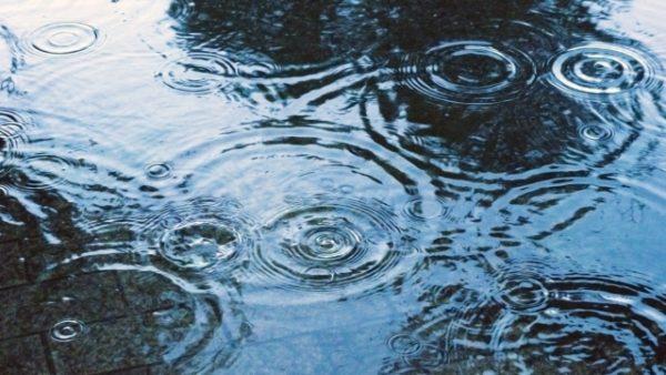 雨の日の通勤時に履ける防水スニーカーのチェックポイント