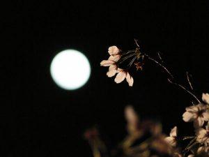 月の位置を見ただけで時間が分かる