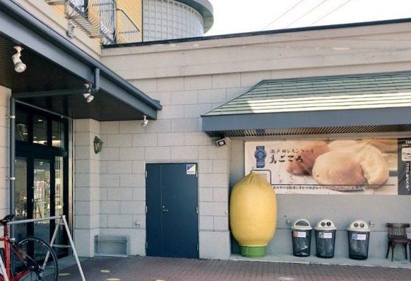 島ごころ「瀬戸田レモンケーキ」レビュー!