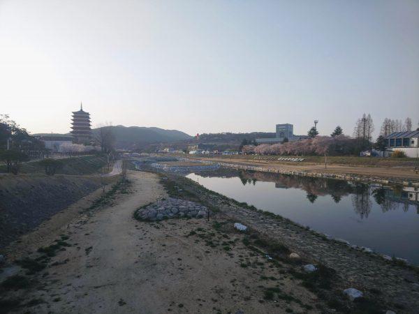 「慶州さくらマラソン&ウォーク」の出場にかかる費用